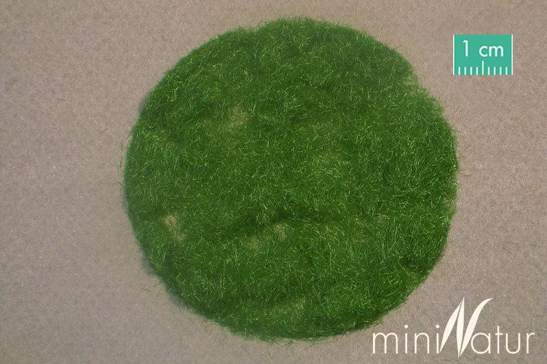 Frühling 11,60 € // 100 g Silhouette miniNatur 002-21 Gras Flock 2mm 50g