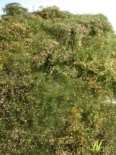 25 x 15,5 cm Spätherbst Silhouette miniNatur 732-24S Wildwuchsgebiet